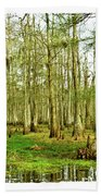 Grand Bayou Swamp  Beach Towel