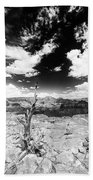Grand Canyon Landscape Beach Towel