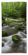 Great Smoky Mountains Roaring Fork Beach Towel