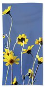 Happy Daisies Beach Towel