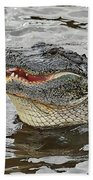 Happy Florida Gator Beach Towel