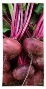 Harvested Organic Beets Beach Towel