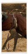 Helluva Rodeo-the Ride 6 Beach Towel