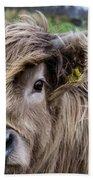 Highland Cow Beach Towel