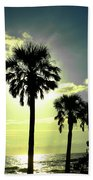 Honeymoon Island Sunset Beach Towel