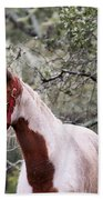 Horse 019 Beach Towel