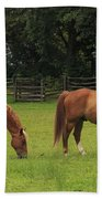 Horses In A Field Beach Towel