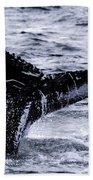 Humpback Fluke Beach Towel