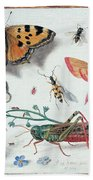 Insects And Garden Pansy Beach Towel