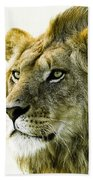 Intensity Beach Towel