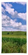 Iowa Cornfield Beach Towel