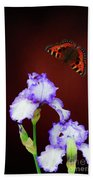 Iris And Butterfly Beach Towel