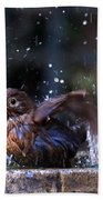 Juvenile Blackbird Beach Towel