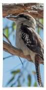 Kookaburra On A Branch Beach Sheet