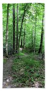 Lakeside Trail Winding Path - Yellowwood Lake Beach Towel
