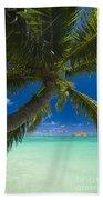 Lanikai Palm Tree Beach Towel