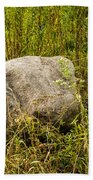 Large Rock And Purple Asters Beach Towel