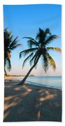 Last Sunbeams Beach Towel