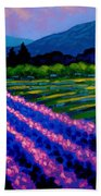 Lavender Field France Beach Towel
