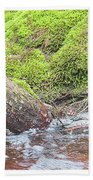 Leaning Tree Trunk By A Stream Beach Towel