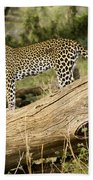 Leopard In The Forest Beach Towel