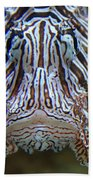 Lion Fish  Beach Towel