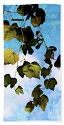 Look Up Again Beach Towel