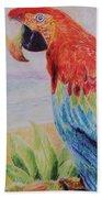 Macaw Beach Towel