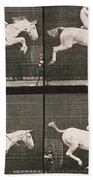 Man And Horse Jumping A Fence Beach Towel