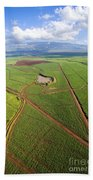Maui Sugar Cane Beach Towel