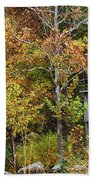 Mill In The Fall Beach Towel