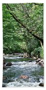 Minnehaha Creek Beach Towel