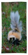Mostly White Skunk Beach Towel