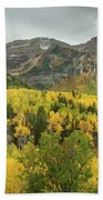 Mount Timpanogos Fall Colors Beach Sheet