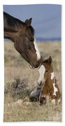 Mustang Mare And Foal Beach Towel