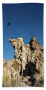 Natural Rock Formation And Wild Birds At Mono Lake, Eastern Sier Beach Towel