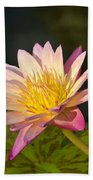 Natures Brilliance Beach Towel
