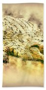 Nile River Crocodile Beach Towel