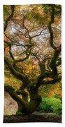 Old Japanese Maple Tree Beach Sheet