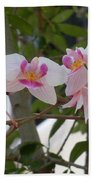 Orchid Bunch Beach Towel