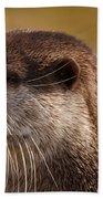 Oriental-small-clawed-otter Beach Towel