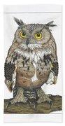 Owl In Pose Beach Towel