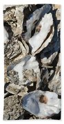 Oyster Shells Beach Towel