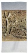 Paleolithic Tool Beach Towel