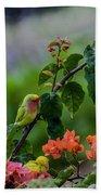 Parakeet South Maui Beach Towel