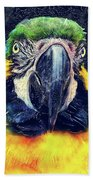 Parrot Art  Beach Towel