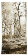 Path In A Forest Beach Towel