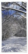 Path In Winter Forest Beach Towel
