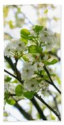 Pear Tree Blossoms Beach Towel