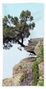 Pine Tree On A Rock Beach Towel